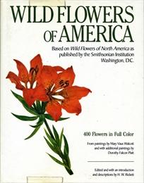 Wild Flowers of America