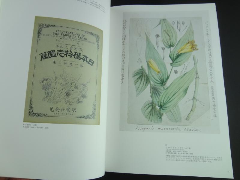 ボタニカルワールドへのいざない 「牧野富太郎と植物画展」図録