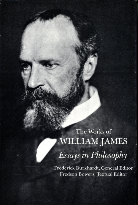 Essays in Philosophy