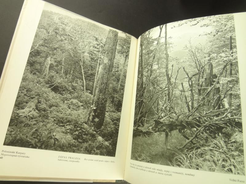 Nase pralesy (Naše pralesy)1