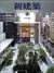 新建築 2005年9月号