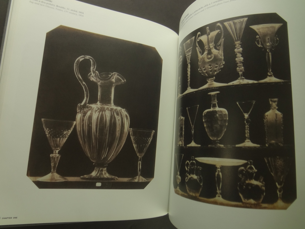 Zivot veci: Idea zatisi ve fotografii 1840-1985 / The Life of Things: The Idea of Still Life in Photography 1840-19853
