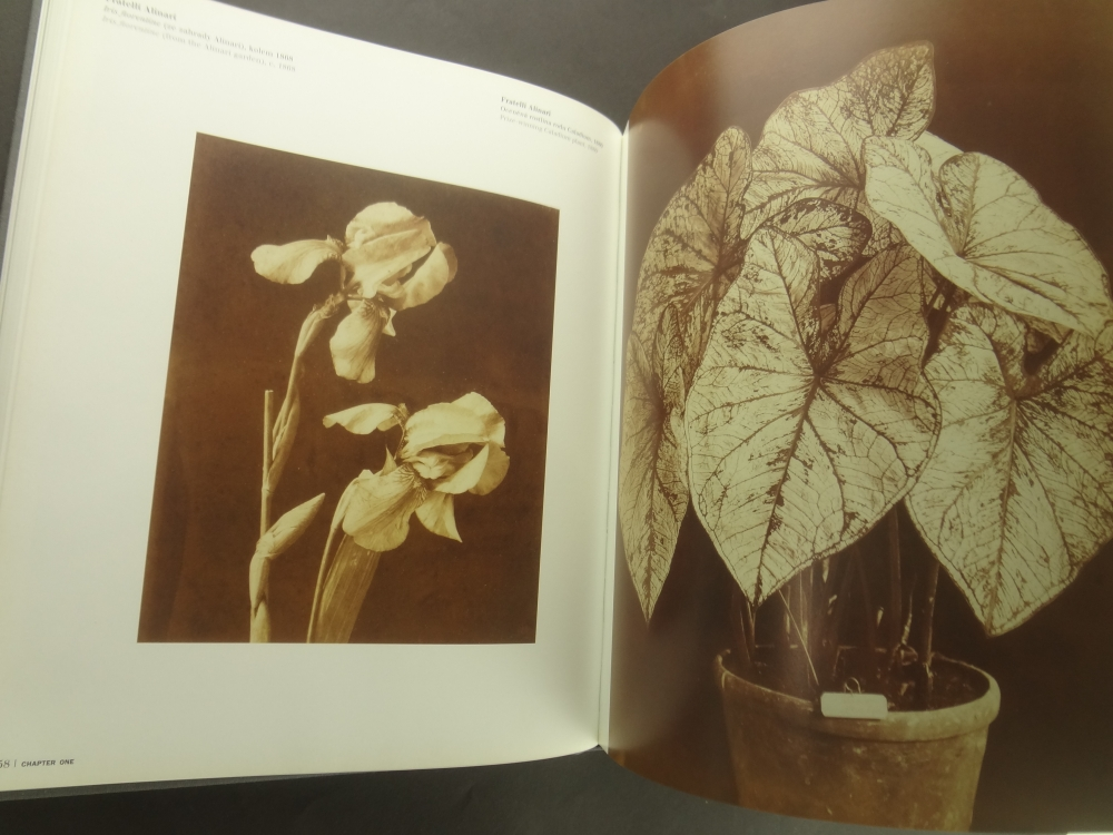 Zivot veci: Idea zatisi ve fotografii 1840-1985 / The Life of Things: The Idea of Still Life in Photography 1840-19854