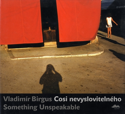 Vladimir Birgus Cosi nevyslovitelneho / Something Unspeakable