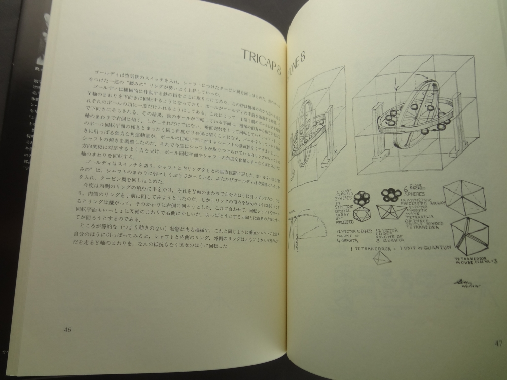 テトラスクロール / バックミンスターフラー3