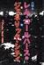 OMA レム・コールハースのジェネリック・シティ - TN Probe Vol.2 1995